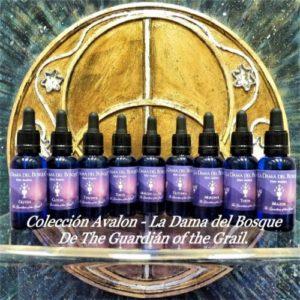 Elixires Avalon